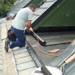 renovation specialist NZ
